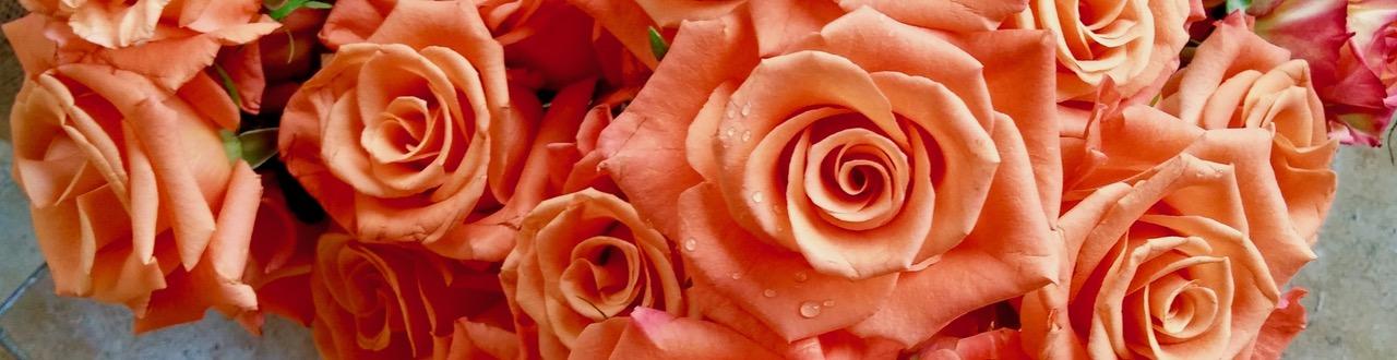 dmc-florals-austin